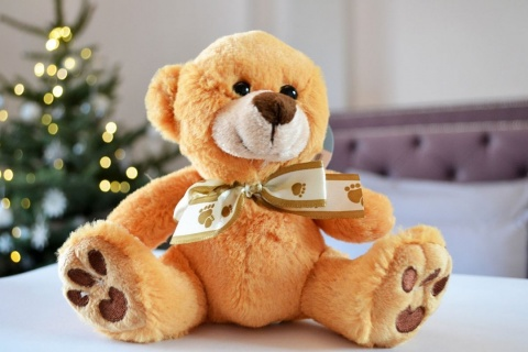 Ursulet de plus pentru copii ANTON 15 cm