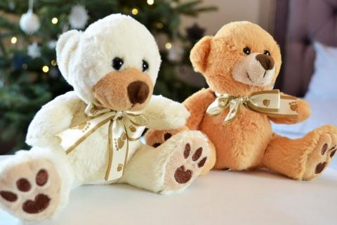 Ursulet de plus pentru copii 15 cm